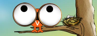 Bird_watching_2